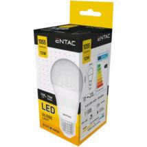 Entac LED Gömb E27 12W NW 4000K