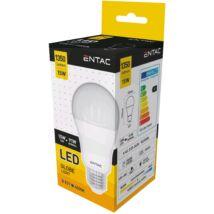 Entac LED Gömb E27 15W NW 4000K